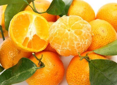 橘子全身都是宝 橘络保护血管